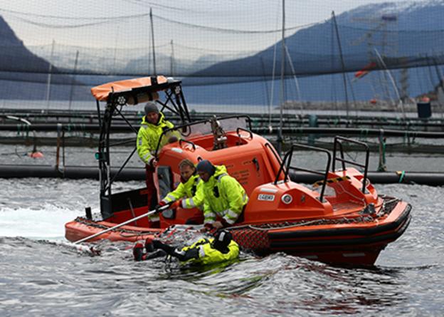 VIKING Safety Academy rescue frame training